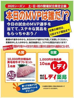 MVP_サイズ縮小.jpg