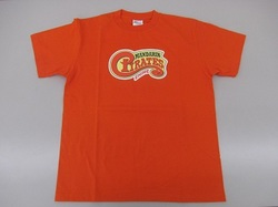 Tシャツ(オレンジ).JPG